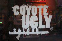 Coyote Ugly is coming to Cardiff!
