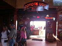 Inside Coyote Destin