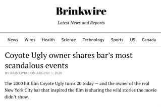 News Article: Brinkwire